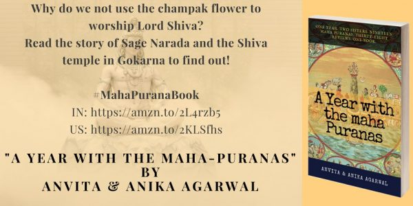 A Year with the Maha-Puranas
