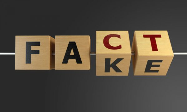 Fact or Fake Concept With Wooden Cubes